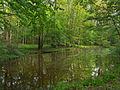 Flickr - Nicholas T - Graver Arboretum (2).jpg