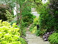 Flickr - brewbooks - Looking down to lowest level of our back garden.jpg