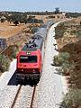 Flickr - nmorao - IC 570, Azinheira dos Barros, 2008.08.01.jpg