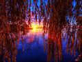 Flickr - paul bica - september morning.jpg