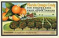Florida Orange Candy, for health's sake, eat more fruit sugar candies containing C and E Vitamins,... (NBY 1141).jpg