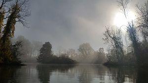 Peche Island - Foggy morning inside the island.