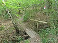 Footbridge in Parrott's Copse - geograph.org.uk - 565411.jpg