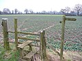 Footpath near Kingsley - geograph.org.uk - 340528.jpg