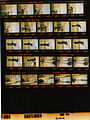 Ford A3869 NLGRF photo contact sheet (1975-03-30)(Gerald Ford Library).jpg