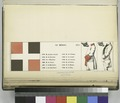 France, 1764, 1 (NYPL b14896507-1236372).tiff