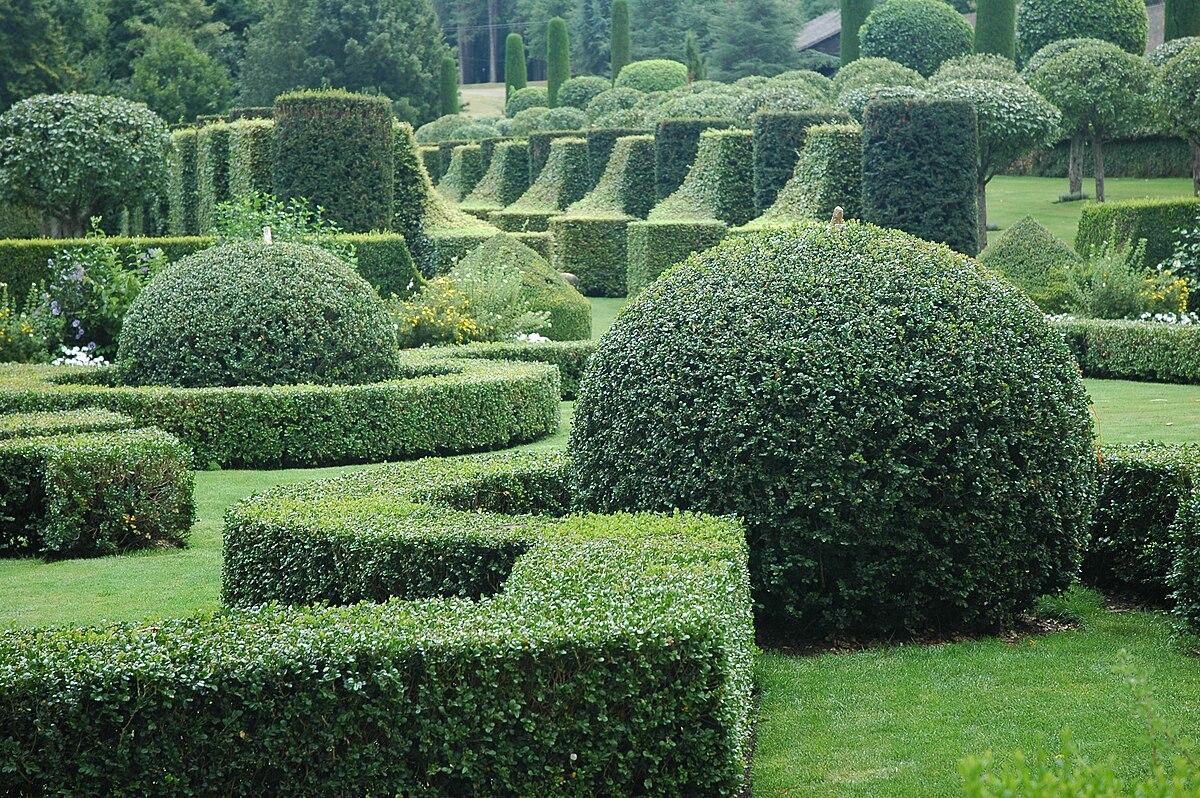 Topiaire wiktionnaire for Jardin wiktionnaire