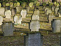 Frankfurter-Hauptfriedhof-2012-Weltkrieg I. Opfer-749.jpg