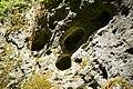 Fußweg Felsengarten Sanspareil 04082019 044.jpg