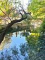 Fuente del Río 2.jpg