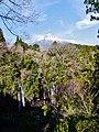 Fujinomiya Shiraito-Wasserfall & Fuji-san 2.jpg