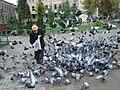 Güvercinler-.JPG