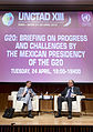 G20 Briefing on progress and challenges by the Mexican (7112052679).jpg