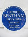 GEORGE BENTHAM 1800-1884 Botanist lived here 1864-1884.jpg