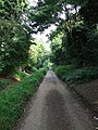Gall End Lane - geograph.org.uk - 976814.jpg