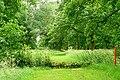 Gallops through the woods - geograph.org.uk - 1381381.jpg