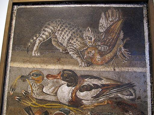 Gatto che azzanna pollo, anatre, pesci, uccelli e conchiglie, da casa del fauno a pompei, 9994, 03