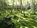 Giō-ji - Kyoto - DSC06270.JPG