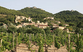 View of Gigondas and its vineyard
