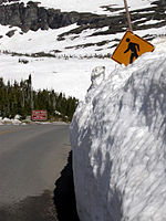 Glacier National Park Early Summer Snow Road 2043.jpg