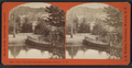 Glen Iris (lake and Indian canoe), Portage, N.Y, by Walker, L. E., 1826-1916.png