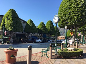 Glendora, California - Glendora Village with its famous Ficus trees