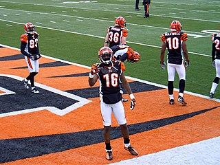 2007 Cincinnati Bengals season