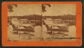 Goguac Lake from ... looking at ... Point, by Baldwin, Schuyler C. (Schuyler Colfax), 1823-1900.png