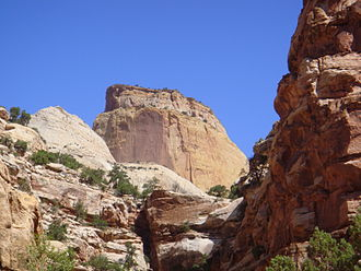 Navajo Sandstone - The Golden Throne, a rock formation in Capitol Reef National Park.  Though the park is famous for white domes of the Navajo Sandstone, this dome's color is a result of a lingering section of yellow Carmel Formation carbonate, which has stained the underlying rock.
