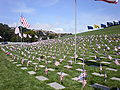 Golden Gate National Cemetery mound Memorial Day 2008 graves 1.JPG