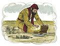 Gospel of Matthew Chapter 13-18 (Bible Illustrations by Sweet Media).jpg