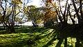 Grassy track - panoramio.jpg