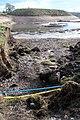 Gravel pit exposed pipework, Lockington cum Hemington, Leicestershire.jpg