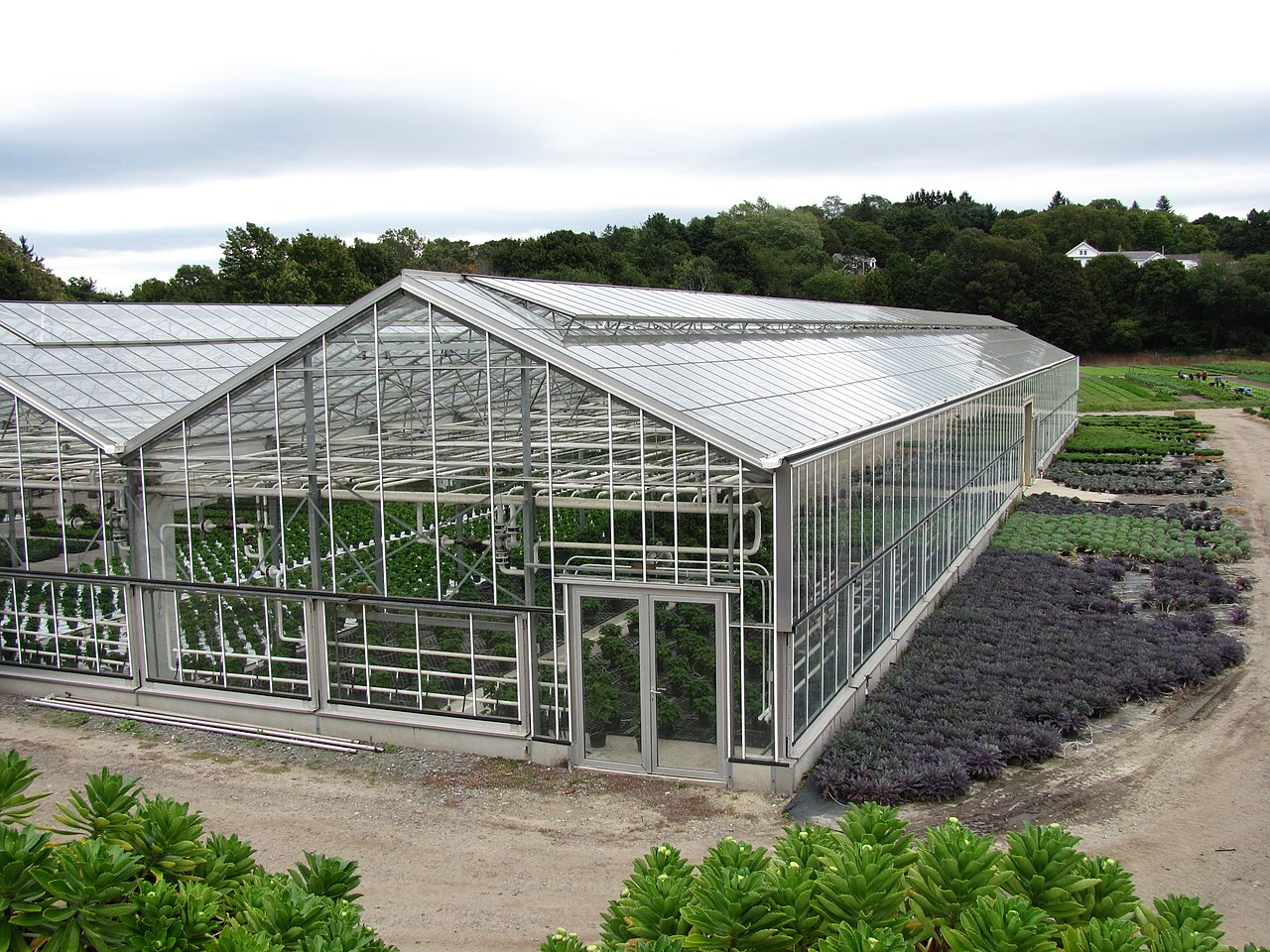 Large Greenhouse Building Plans