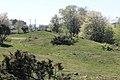 Grevie åsars naturreservat 2020-1.jpg