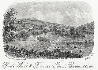 Gwili Weir & Furnace Pond, Carmarthen