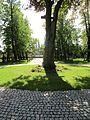 Hřbitov Strašnice 37.jpg