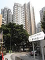 HK Sai Ying Pun 薄扶林道 Pokfulam Road sign 大廈 Multistoried buildings.jpg