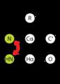 HN HSQC Scheme.png