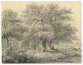 HUA-202554-Gezicht op een aantal grote bomen in het park van de buitenplaats Beukenburg aan de Beukenburgerlaan bij Groenekan gemeente Maartensdijk met rechts en.jpg