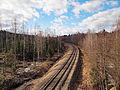 Haapamäki-Jyväskylä railway.jpg