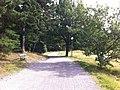 Hagalund, Solna, Sweden - panoramio (121).jpg