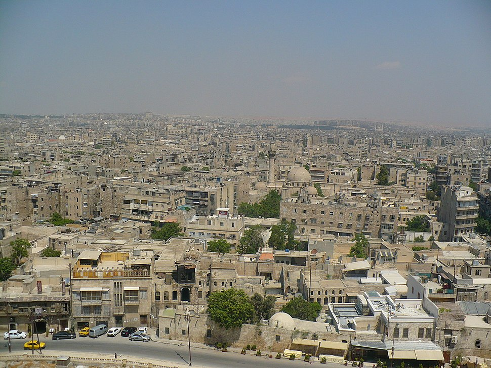 Halepvikicizer
