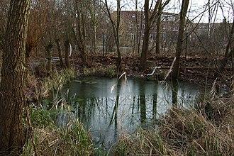 Facultative lagoon - Facultative lagoon (polishing pond) providing tertiary treatment after a constructed wetland in Hamburg-Allermöhe, Germany