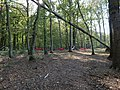 Hammock after protest in the Hambach forest 02.jpg