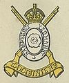 Hampshire Carabiniers badge.jpg