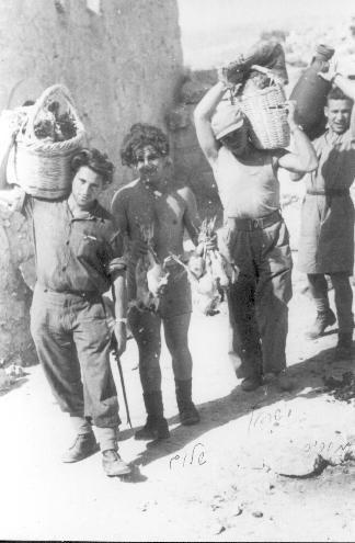 Harel in Bayt Nattif