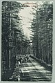 Harjutie, Valtionhotelli, Nervanderin kumpu, circa 1900 PK0120.jpg