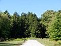 Harmony Glen Dr. Trees - panoramio.jpg