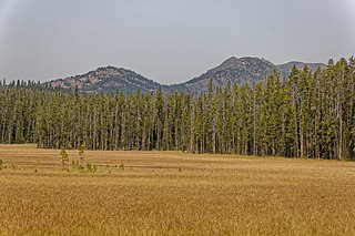 Hedges Peak mountain in United States of America